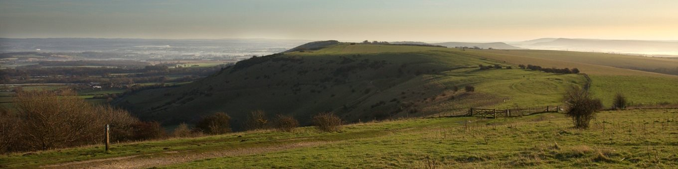 A landscape image showing the rolling hills of the Sussex Downs