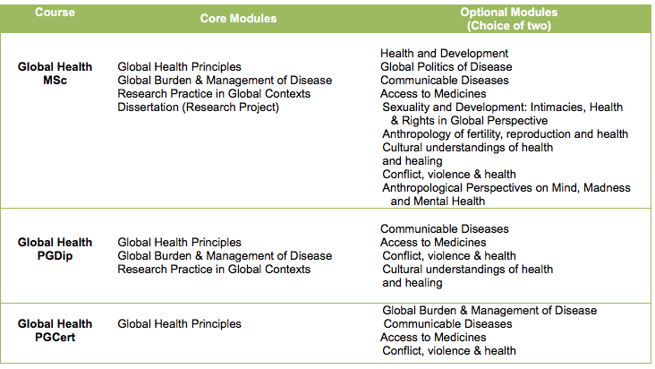 Global Health MSc course structure (002)