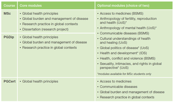Global Health course structure