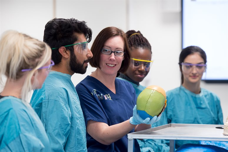 Prof Claire Smith discusses a model of a skull with students in anatomy lab